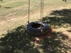 Rope Swing Tire