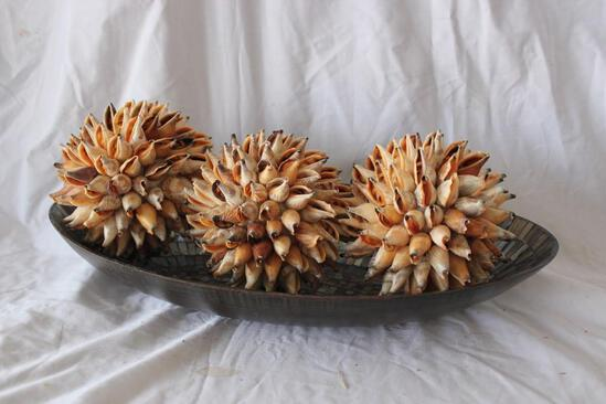 Vintage Bowl With 3 Shell Balls 17 X 10