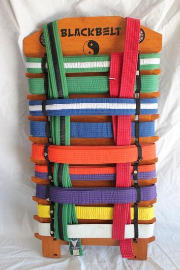 Genuine Karate Belt Collection Board, Genuine Belts 11 Total