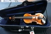 Musaica Imports 2009 1/2 Academia Violin, SN #AW2803, Hard Sided Case.