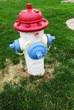 American Foundry Concrete Fire Hydrant.