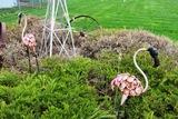 (2) Metal Flamingo Yard Statues.