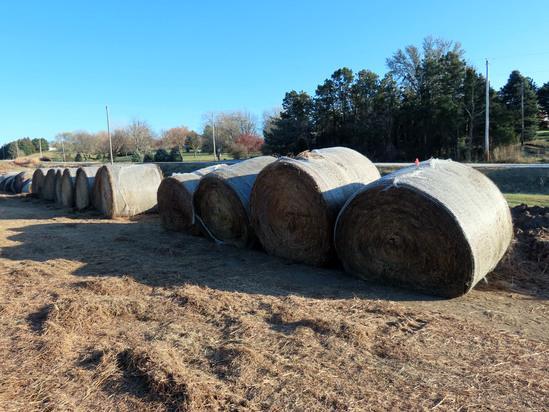 (11 Bales) (7) 2019 Grass Hay & (4) 2019 Alfalfa Round Bales (Approx. 2,000