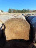 (23) 2019 Alfalfa Hay Round Bales (Approx. 2,000 lbs. per Bale).