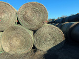 (110 Bales) (72) Grass Hay & (38) Alfalfa Round Bales (Approx. 2,000 lbs. p