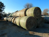 (39) 2019 Grass Hay Round Bales (Approx. 2,000 lbs. per Bale).