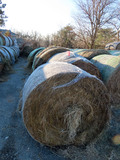 (11) 2019 Grass Hay Round Bales (Approx. 2,000 lbs. per Bale).