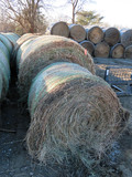 (7) 2019 Grass Hay Round Bales (Approx. 2,000 lbs. per Bale).