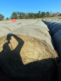 (23) 2019 Grass Hay Round Bales (Approx. 2,000 lbs. per Bale).