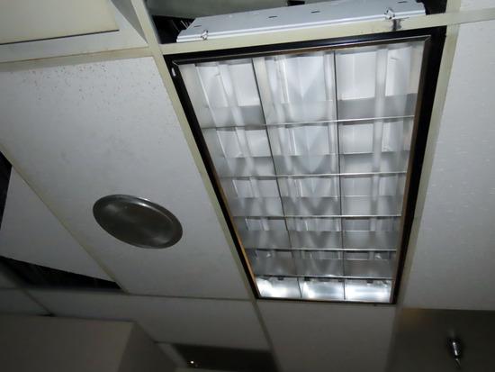 Ceiling Mount Speaker & (3) 4' Fluorescent Surface Mount Lights.