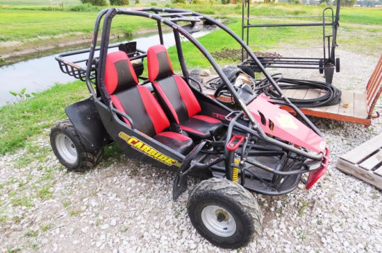 Fox 2-Person Dune Buggy, 150 cc Gas Engine w/ Electric Start