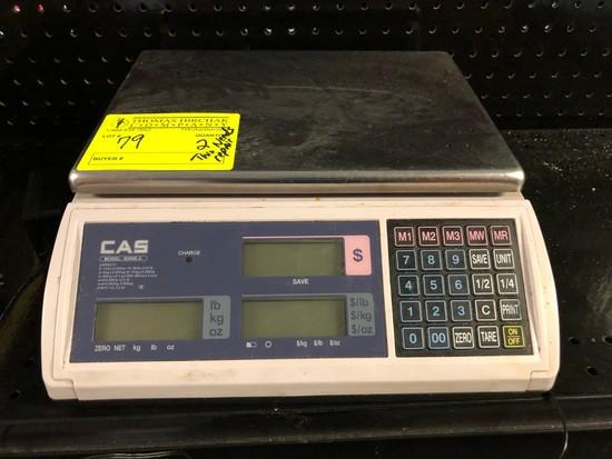 CAS Digital Platform Scale