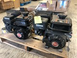 (2) DR OHV Gas Engines
