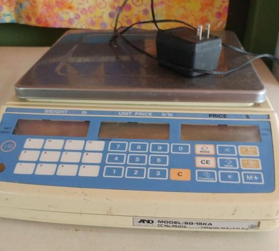 AND SG15KA NTEP Class 3 Price Computing Scale
