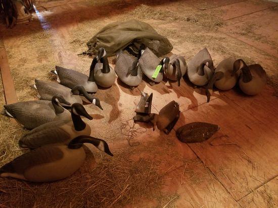 (12) Poly Canadian Goose Decoys