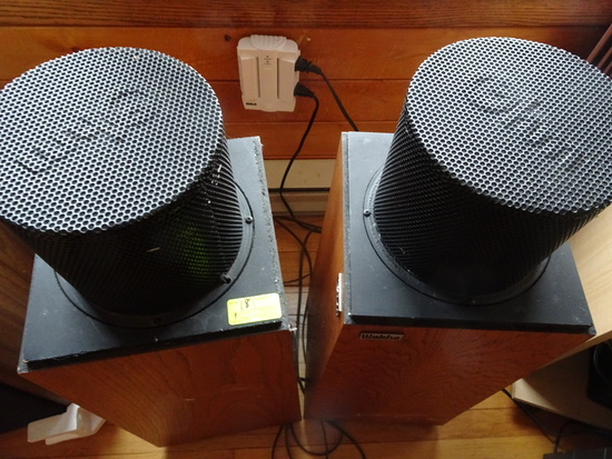 "Walsh 2 ""OHM"" Speakers"