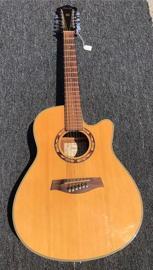 Ibanez AE 12 String Acoustic/Electric Guitar