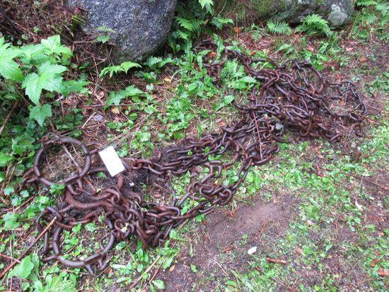 (1) Skidder Chain