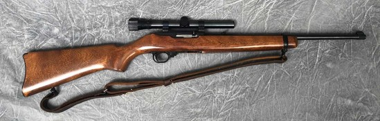Ruger 10/22 Semiautomatic Rifle