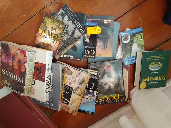 (16+/-) Coffee Table Picture Books