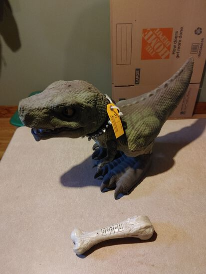 Battery Operated T-Rex Toy