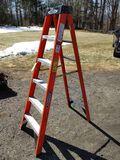 Werner 6' Fiber Glass Ladder