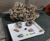 Asst. Mineral Stones
