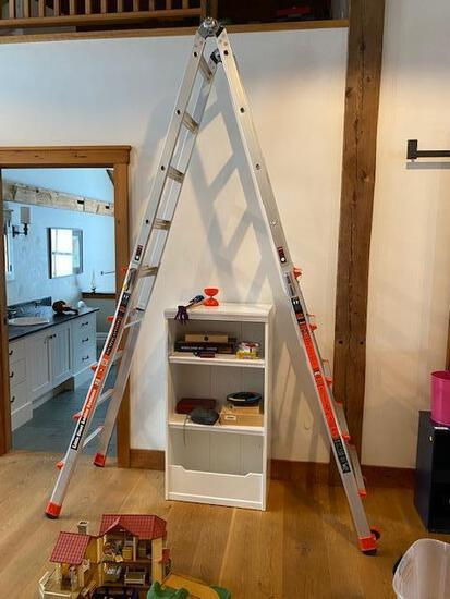 Little Giant Model 22 Revolution Folding Ladder