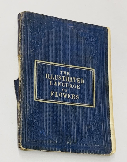 The Illustrated Language of Flowers (1864) with Color Illustrations