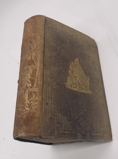 The Life and Adventures of Robinson Crusoe (1853) by Daniel De Foe