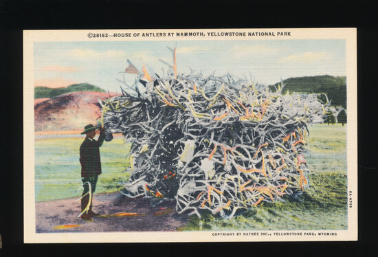 1948 House of Antlers at Mammoth, YellowstoneNational Park.  SIZE:  Standar