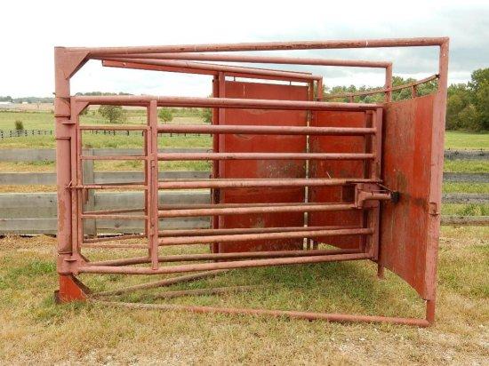Long Horn Cattle Chute