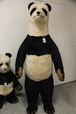 German Steiff Studio Panda Bear 6 ft Foot, Has
