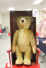 "18"" German Steiff Papa Bear #1 of Collectors"