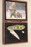 Single Blade Pocket Knife with Bears New in Box