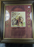 THE AMERICAN INDIAN HEAD CENT COLLECTION IN FRAME - 10 COINS