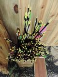 100 plus Beeman hunter Jr. arrows.