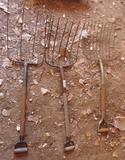 Three pitchforks.