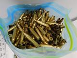 223/5.56 brass for reloading