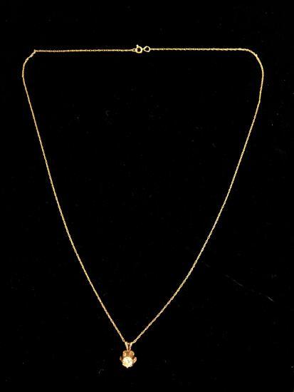14k Yellow Gold Diamond Pendant & Gold Chain