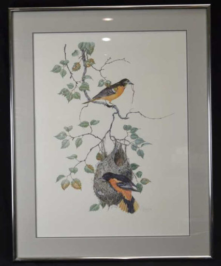 Robin Hill Signed Print, Birds